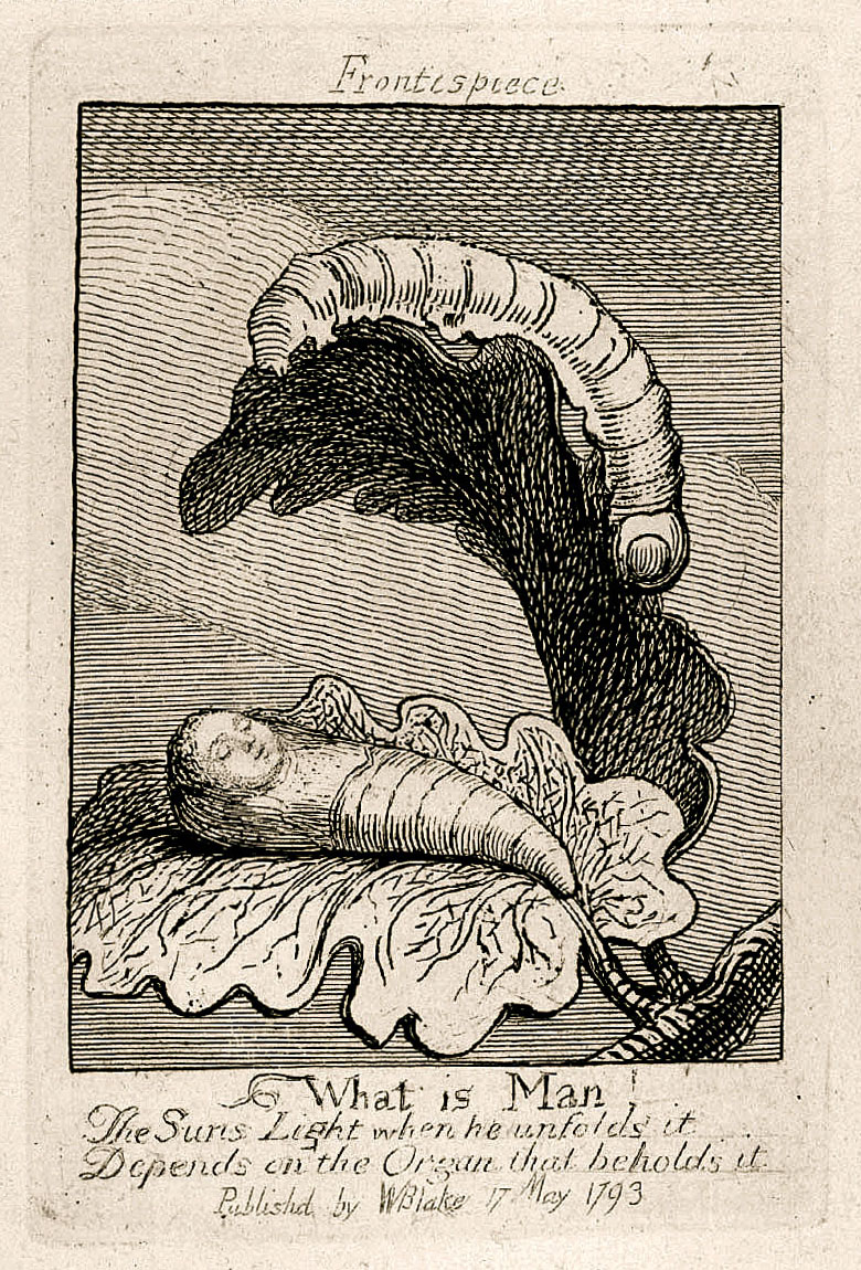 Frontispiece What is Man! The Suns Light when he unfolds it Depends on the Organ that beholds it Publishd by WBlake 17 May 1793