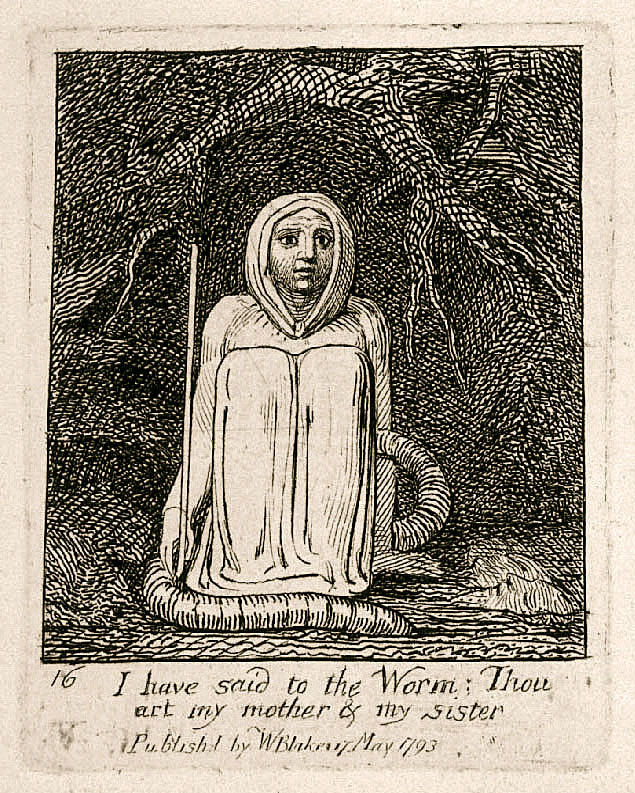 16 I have said to the Worm: Thou 	art my mother & my sister 	Publishd by WBlake 17 May 1793